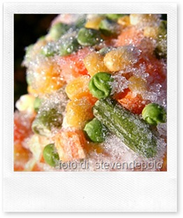 congelare in casa pasta fresca e sughi