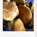E' autunno: tempo di funghi e ricette a tema!