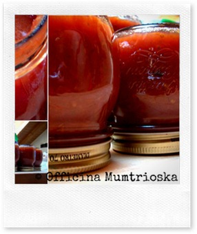 FoodBlogger del Sabato: il ketchup fai da te di Mumtrioska