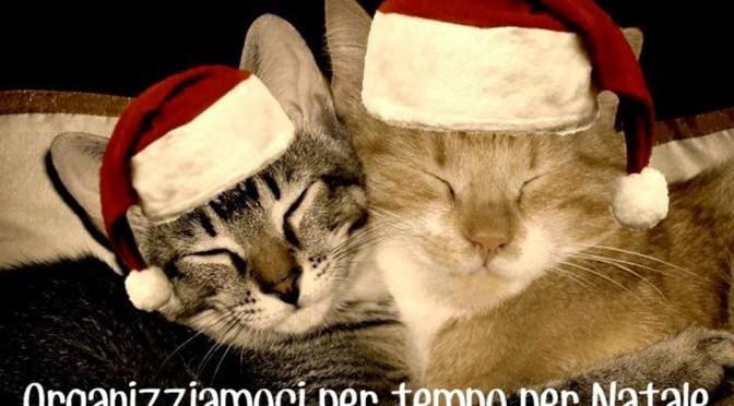 Organizziamoci per tempo per Natale