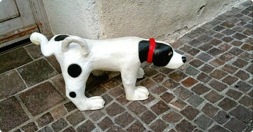 stone-dog-194453_640.jpg