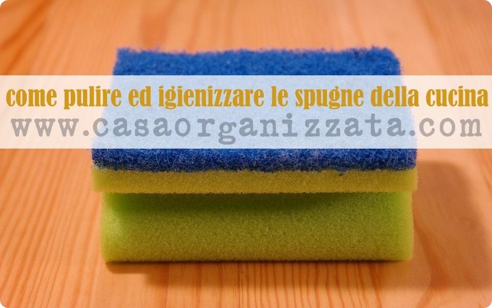 Igiene domestica Come disinfettare e igienizzare le spugne della cucina