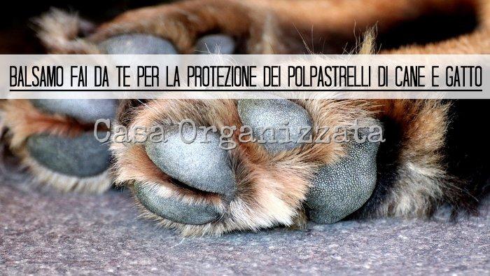 balsamo fai da te per proteggere i polpastrelli di cane e gatto