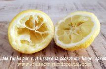 Come riutilizzare i limoni spremuti, 28 idee utili e furbe