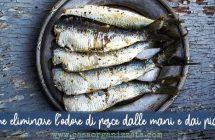 Come eliminare l'odore di pesce dalle mani e dai piatti