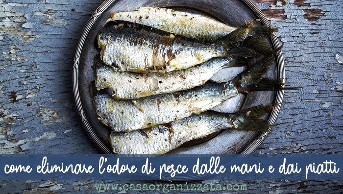 come eliminare l'odore di pesce dalle mani e dalle stoviglie